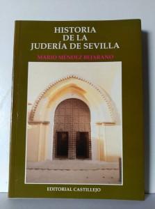 """""""Historia de la Judería de Sevilla"""""""