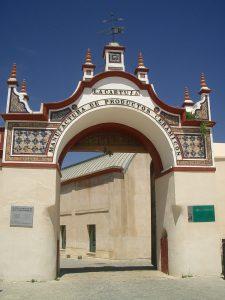 Visita al Instituto Andaluz de Patrimonio Histórico (IAPH)